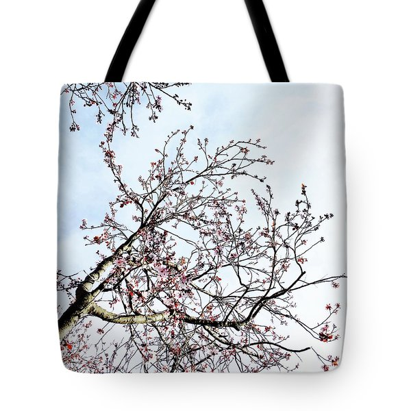 Overhead Branches Tote Bag