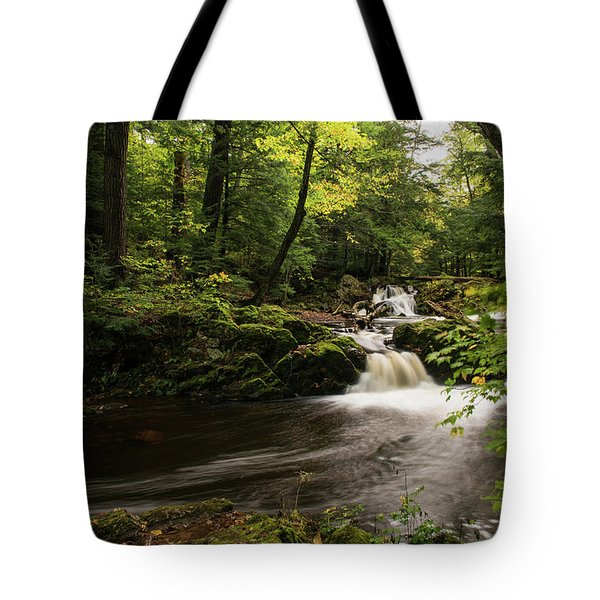 Overlooked Falls Tote Bag