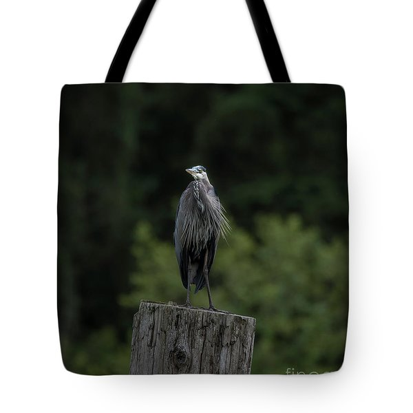 Overlooker  Tote Bag
