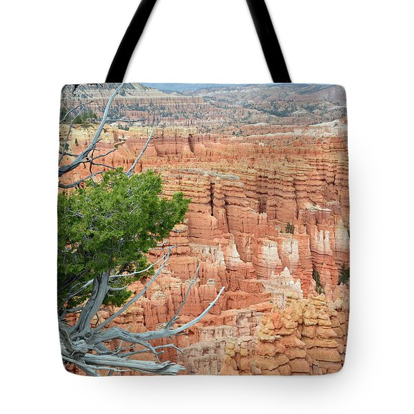Tote Bag featuring the photograph Overlooking Bryce Canyon by Bruce Gourley