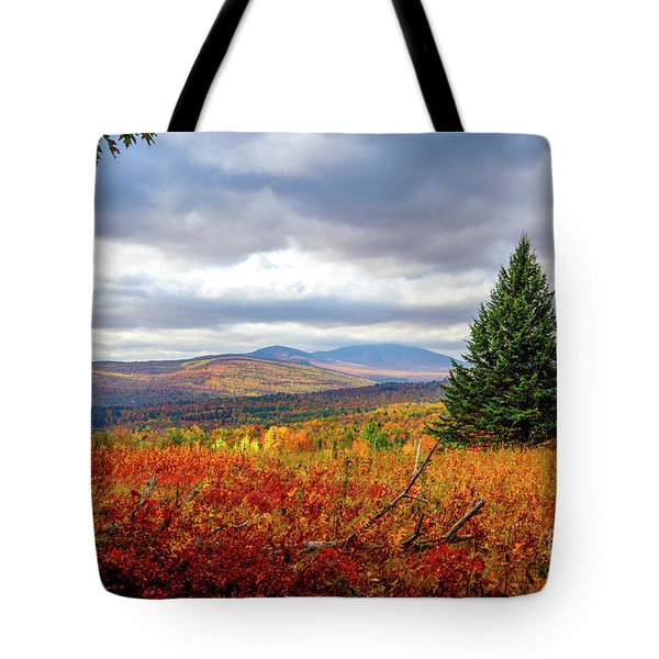 Overlooking The Foothills Tote Bag