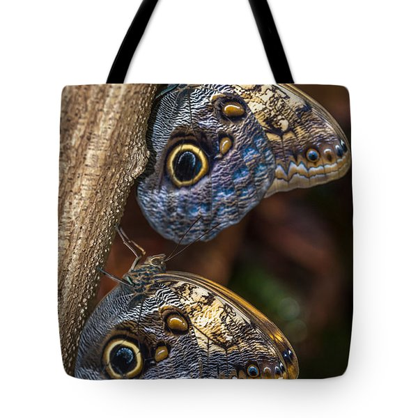 Owl Butterflies Tote Bag