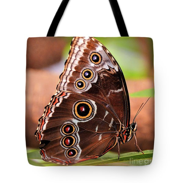 Owl Butterfly Portrait Tote Bag