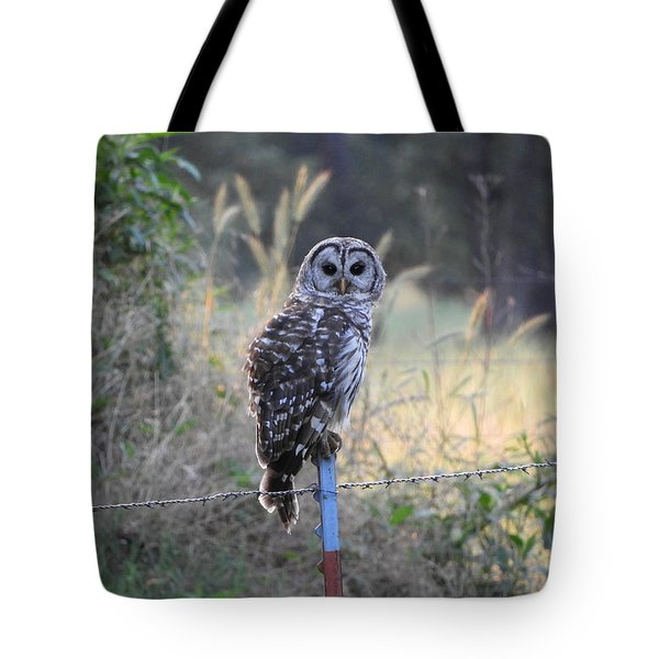 Owl Cherish This Moment Forever Tote Bag by Roxanne Raber