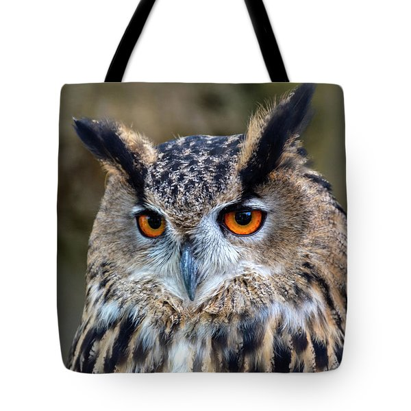 Tote Bag featuring the photograph Owl Eyes by Cliff Norton