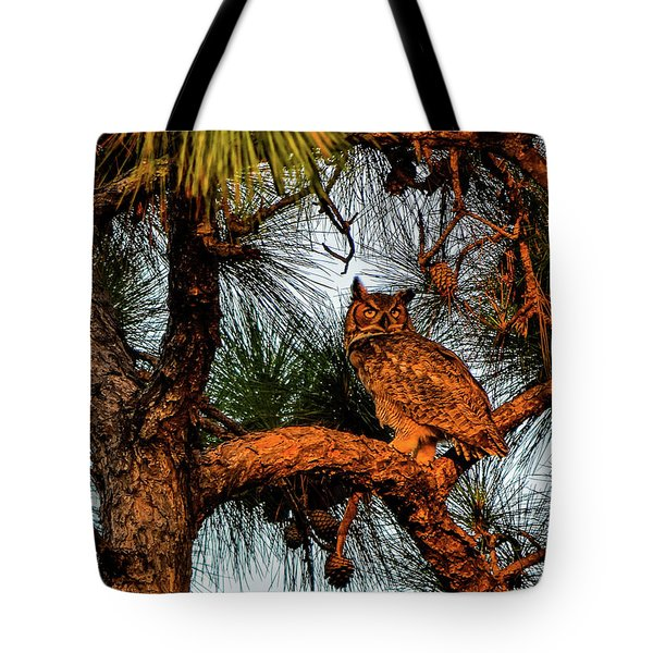 Owl In The Very Last Sunset Light Tote Bag