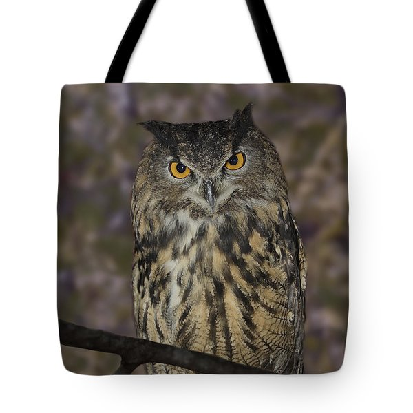 Tote Bag featuring the photograph Owl by Michele A Loftus