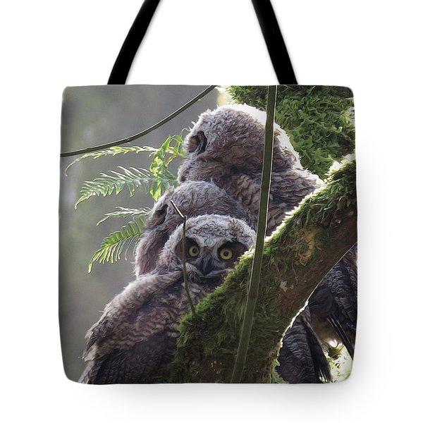 Owl Morning Tote Bag
