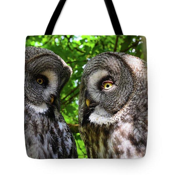 Owl Talk Tote Bag