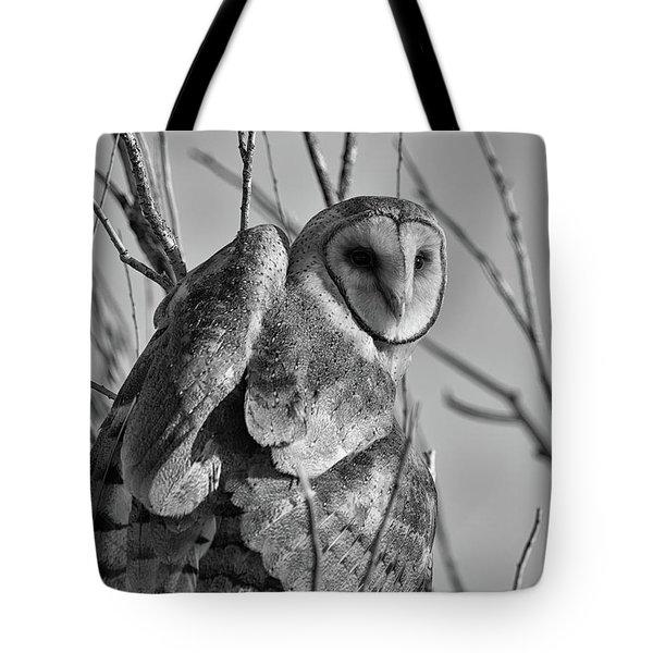 Owl Whites Tote Bag