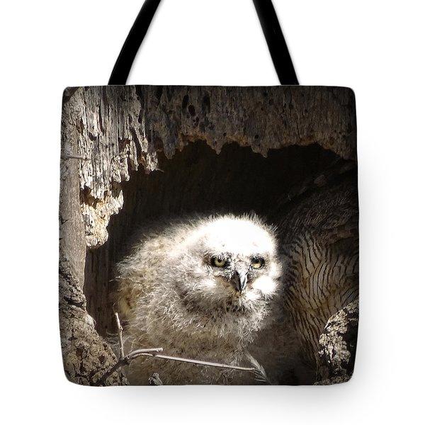 Owlet Tote Bag