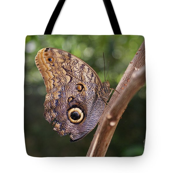 Owls Don't Always Have Feathers Tote Bag by Shelley Jones