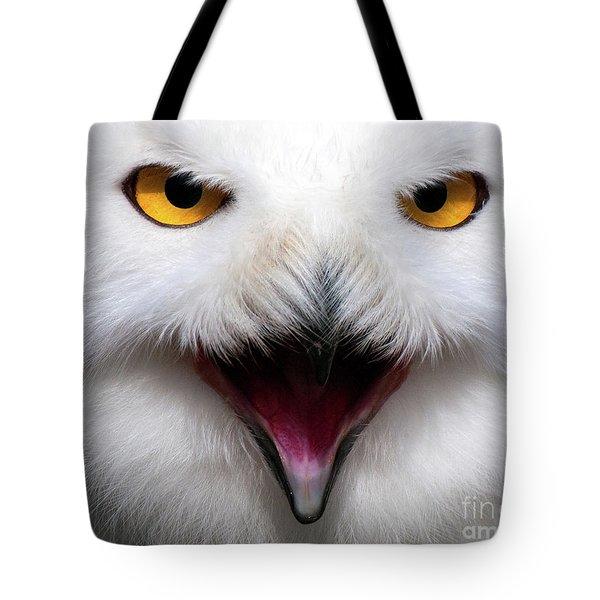 Owlsome Tote Bag