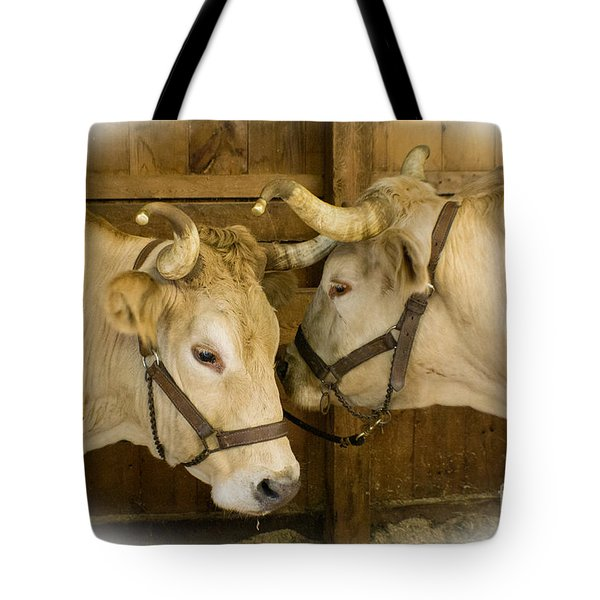 Oxen Team Tote Bag