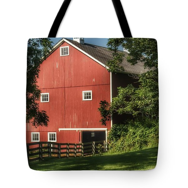 0035 - Oxford's Big Red I Tote Bag