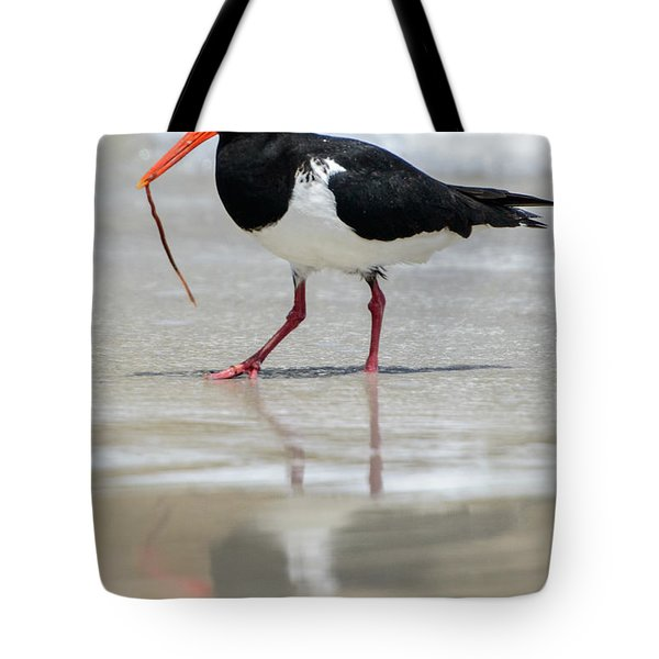 Oystercatcher 03 Tote Bag