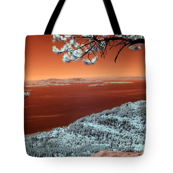 Tote Bag featuring the photograph Oysterdome  by Rebecca Parker