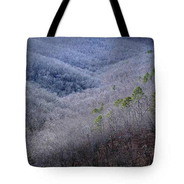 Ozarks Trees #4 Tote Bag