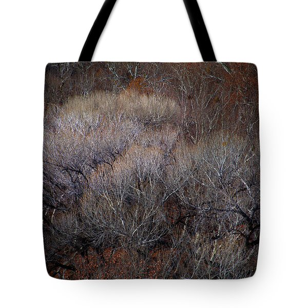 Ozarks Trees #5 Tote Bag
