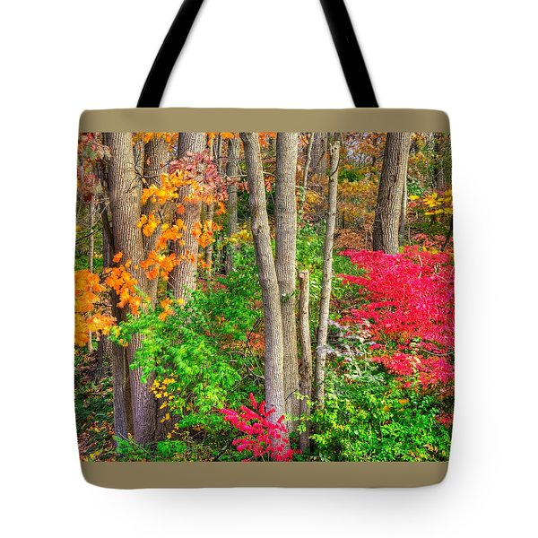 Pa Country Roads - Autumn Flourish - Harmony Hill Nature Area - Chester County Pa Tote Bag