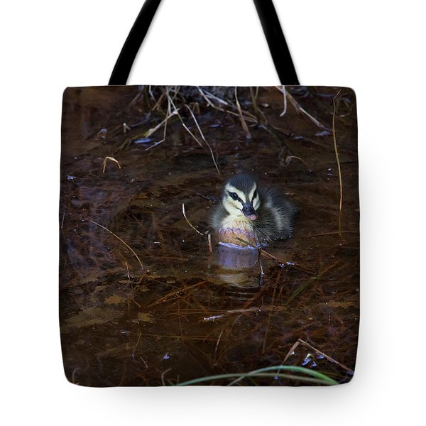 Tote Bag featuring the photograph Pacific Black Duckling by Miroslava Jurcik