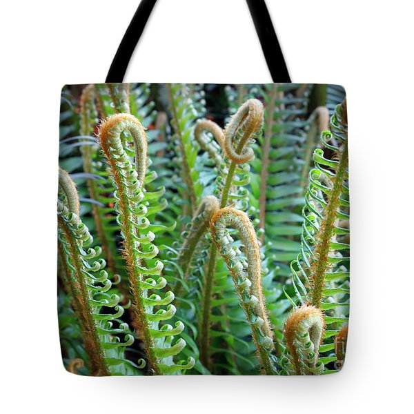 Pacific Ferns Tote Bag