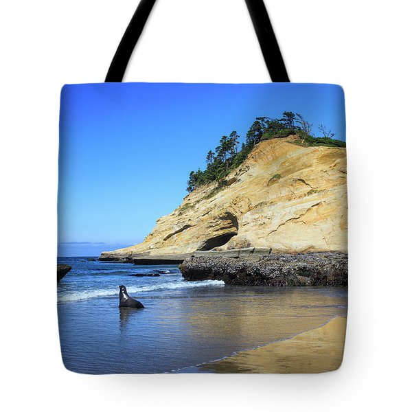 Tote Bag featuring the photograph Pacific Morning by David Chandler
