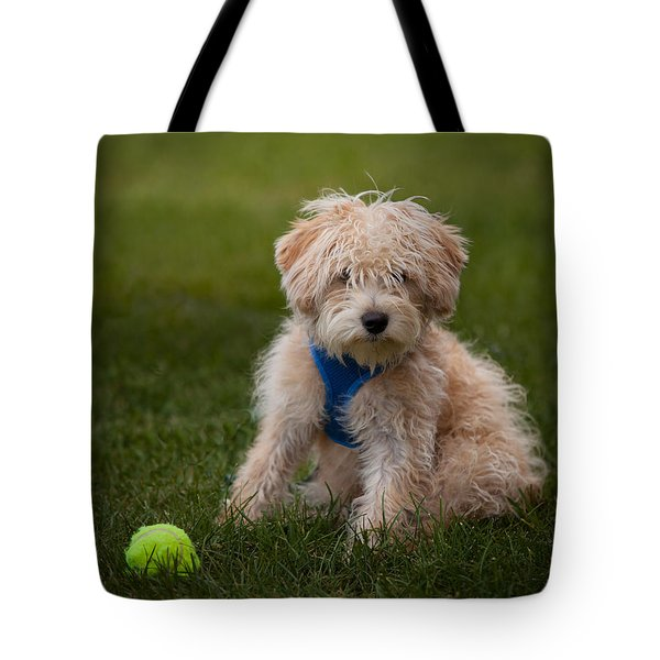 Packer Tote Bag