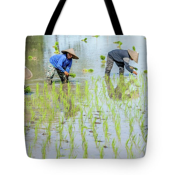 Paddy Field 1 Tote Bag by Werner Padarin
