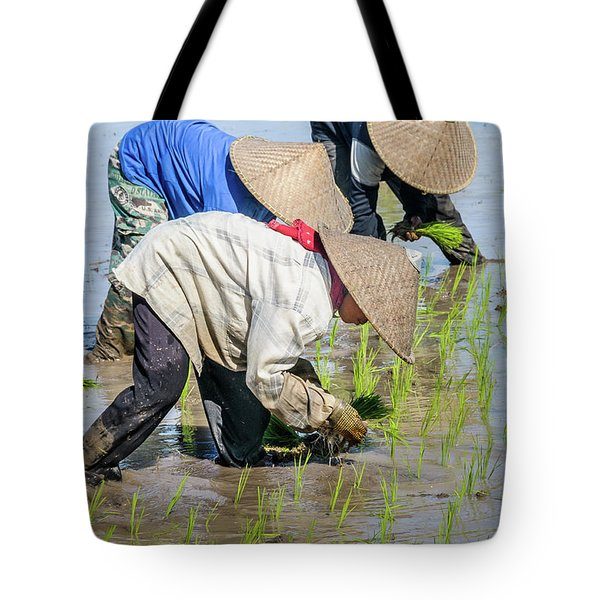 Paddy Field 2 Tote Bag by Werner Padarin