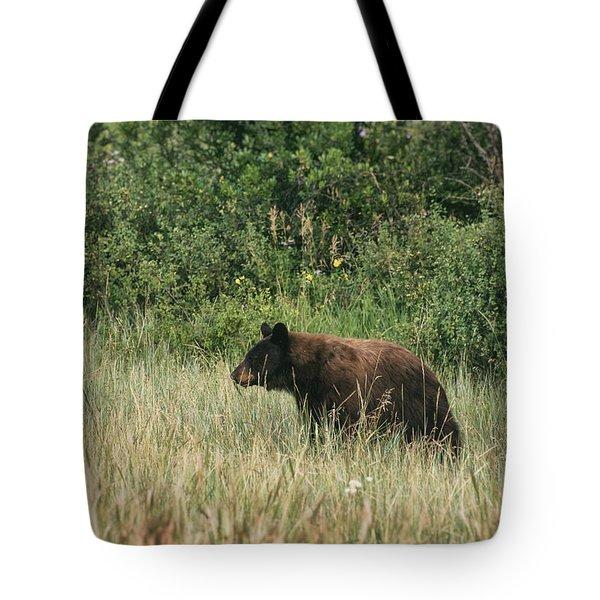 Pagosa Momma Bear Tote Bag