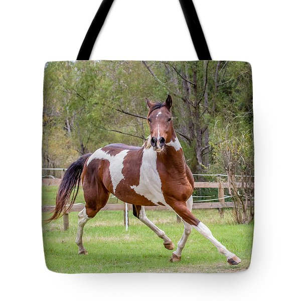 Paint Mare In Field Tote Bag
