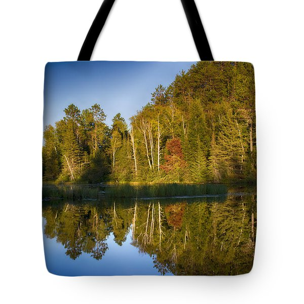 Paint River Tote Bag