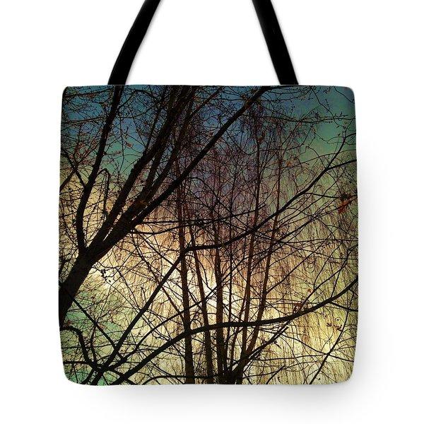 Paintbrush 5 Tote Bag