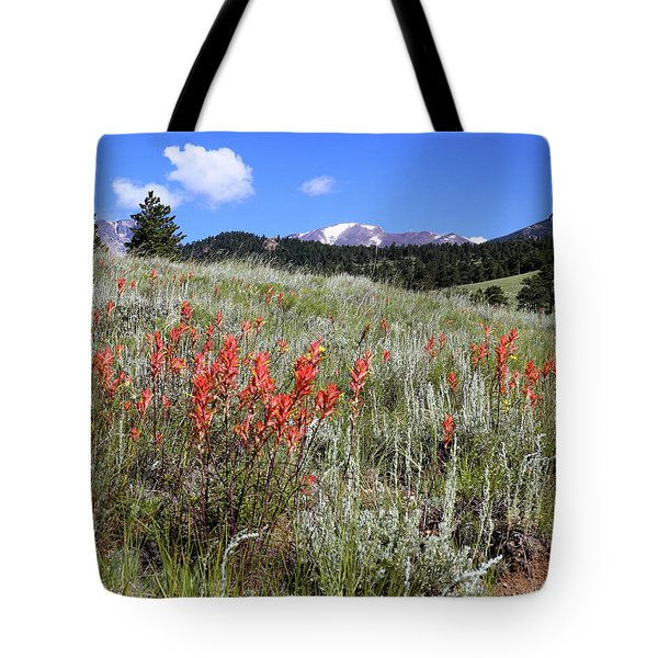 Indian Paintbrush Tote Bag by Scott Kingery