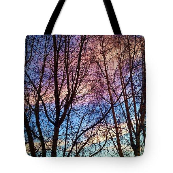 Paintbrush IIi Tote Bag