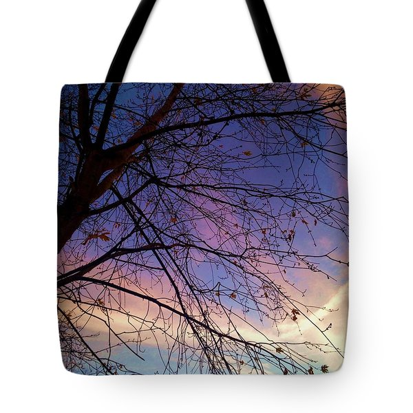 Paintbrush Iv Tote Bag