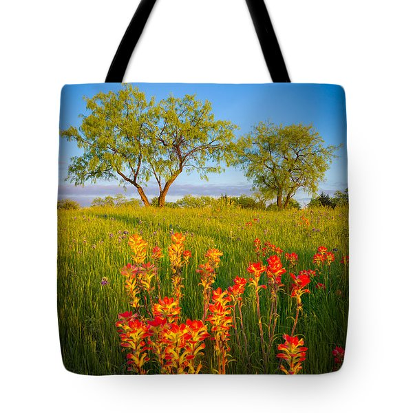 Paintbrush On Fire Tote Bag