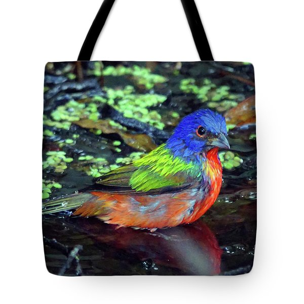 Painted Bunting After Bath Tote Bag by Larry Nieland