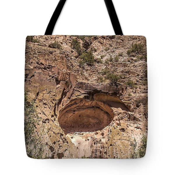 Painted Cave Ancient Art Tote Bag