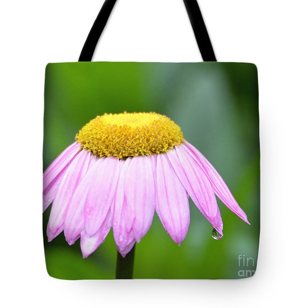 Painted Daisy  Tote Bag