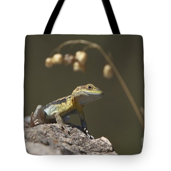 Painted Dragon Tote Bag