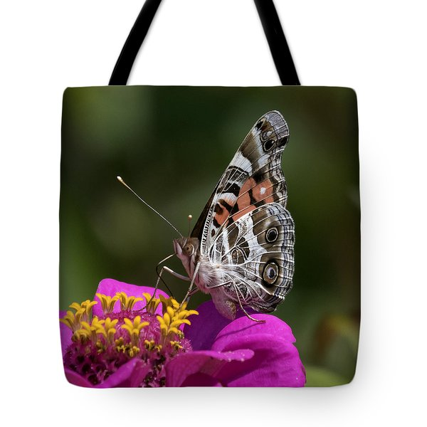 Tote Bag featuring the photograph Painted Lady by David Lester