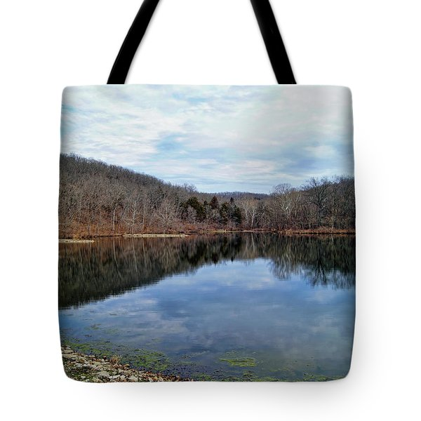 Tote Bag featuring the photograph Painted Rock Conservation Area by Cricket Hackmann