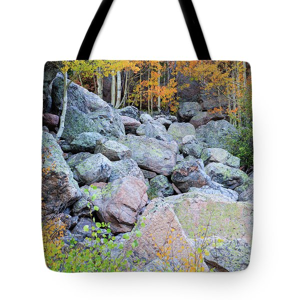 Tote Bag featuring the photograph Painted Rocks by David Chandler