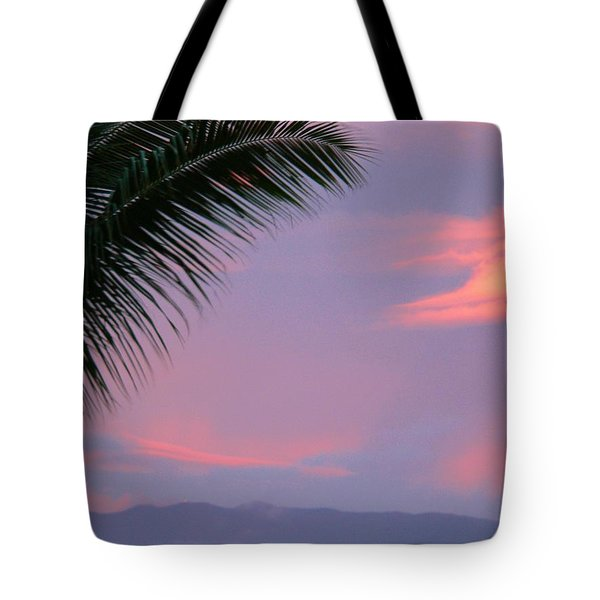 Tote Bag featuring the photograph Painted Sky by Debbie Karnes