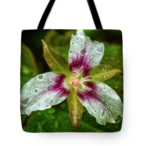 Painted Trillium With Raindrops Tote Bag