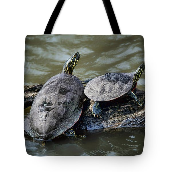 Painted Turtle Pair Tote Bag