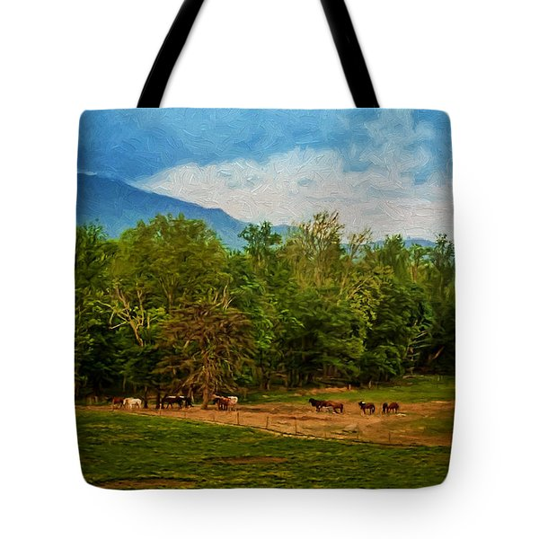 Painted Valley Tote Bag