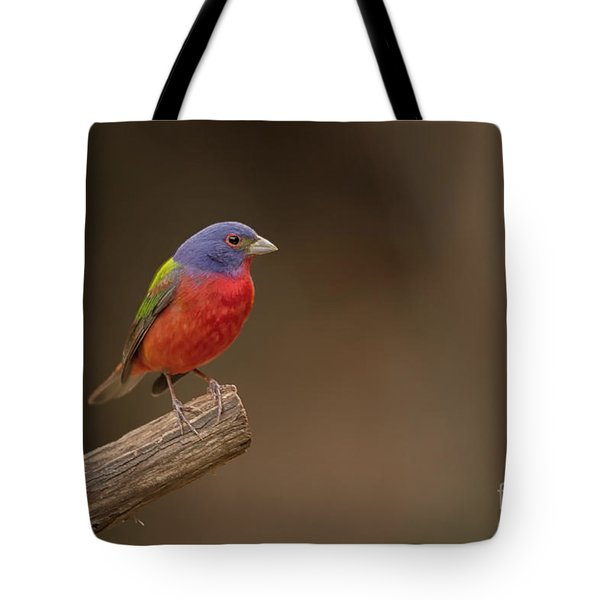Painting The Hill Country Tote Bag